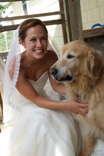 Daughter Meredith on her wedding day with cherished family member Lucky our golden retriever.